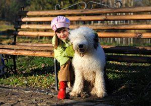 apprendre a devenir proprietaire de chien responsable
