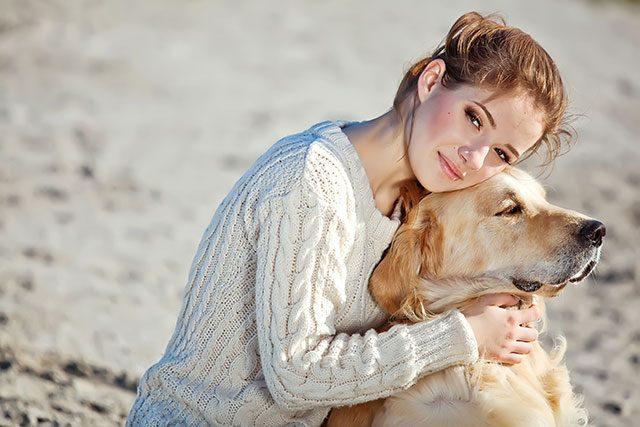 chiens et emotions