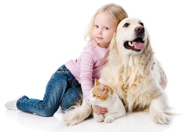 education canine enfants